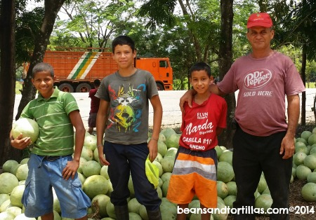Jose & Sons